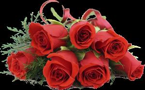Kakogo-tsveta-rozyi-podarit-devushke