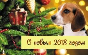 kartinki-pro-novyj-2018-god-12-1